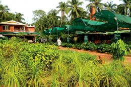 Rayirath -  Herb Garden and Nursery